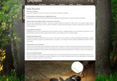 screenshot der web seite designwood.sk